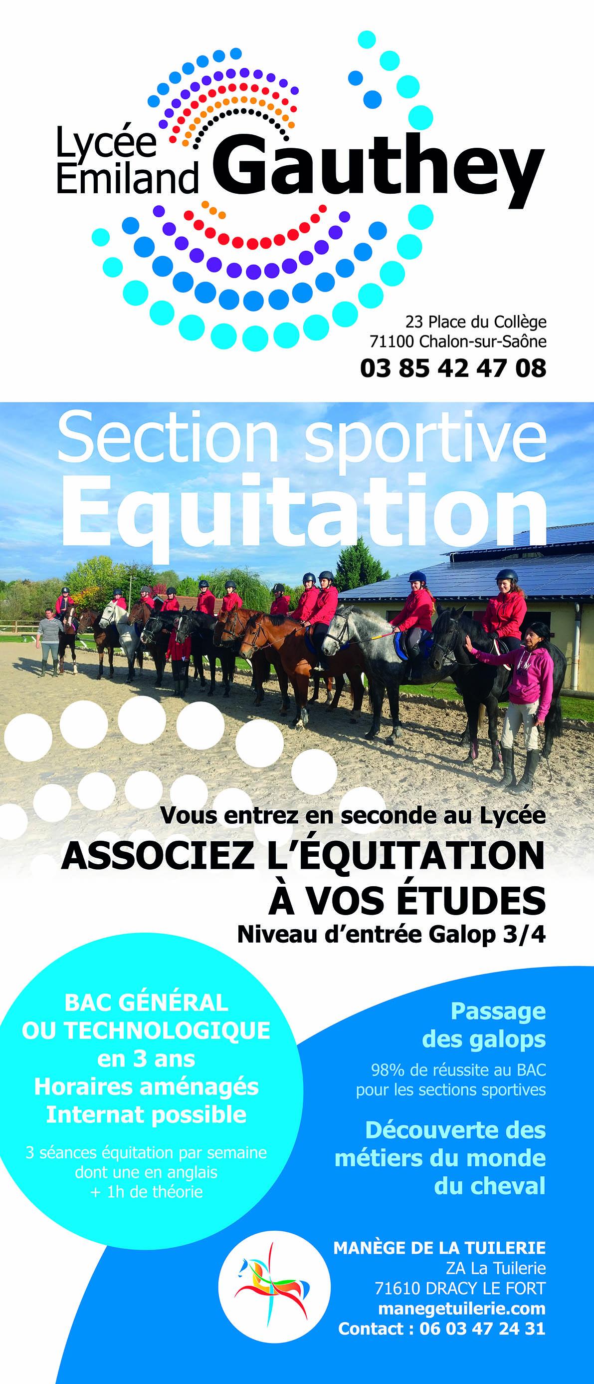 section sportive équitation